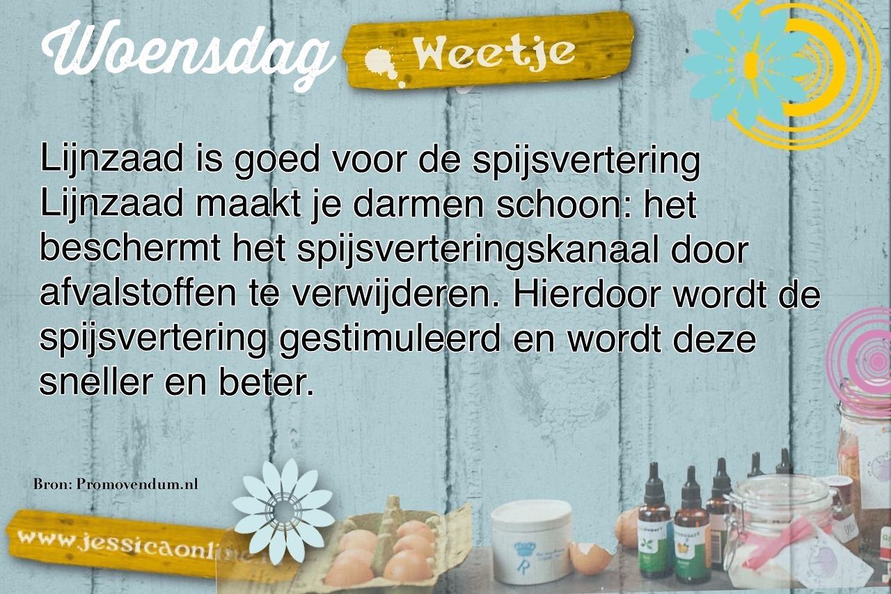 woensdag weetje JessicaOnline.nl