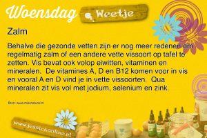 weetje zalm jessicaonline.nl